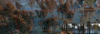 """Логово Ивасика на Кривоуховых топях в задании """"Хозяйки леса"""" в """"Ведьмаке 3"""""""