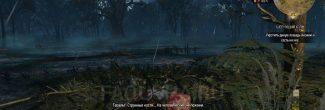 """Могила с костями духа в задании """"Шепчущий холм"""" в """"Ведьмаке 3"""""""