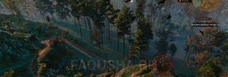 """Гнездо с вороньим пером на Кривоуховых топях в задании """"Шепчущий холм"""" в """"Ведьмаке 3"""""""
