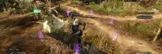 Сражение с полуденницой в Покинутой деревне в задании 'Лихо у колодца' в 'Ведьмаке 3'