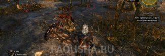 Расположение улик на болотах в задании 'Ценный груз' в 'Ведьмаке 3'