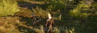 Встреча с охотником Мыславом недалеко от хижины в задании 'Бестия из Белого Сада' в 'Ведьмаке 3'