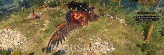 Гнездо грифона в задании 'Бестия из Белого Сада' в 'Ведьмаке 3'