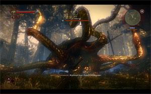 Битва с кейраном в The Witcher 2